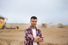 Free Farmer Standing In Field During Harvest Royalty Free Stock Photography - 123581097