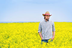 Farmer Standing in Oilseed Rapeseed Cultivated Agricultural Fiel Stock Photo