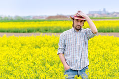 Farmer Standing in Oilseed Rapeseed Cultivated Agricultural Fiel Royalty Free Stock Photo
