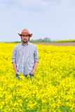 Farmer Standing in Oilseed Rapeseed Cultivated Agricultural Fiel Royalty Free Stock Photography