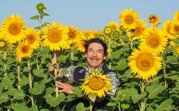 Farmer standing in a sunflower field Stock Photo