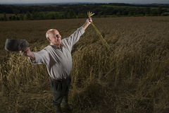 Farmer standing in wheat field Royalty Free Stock Photography