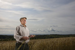 Farmer standing in wheat field Stock Image