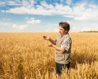 Farmer standing in a wheat field Royalty Free Stock Photos