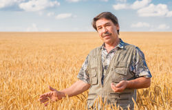 Farmer standing in a wheat field Stock Photos
