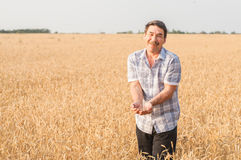 Farmer standing in a wheat field Royalty Free Stock Photography