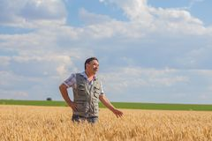 Farmer standing in a wheat field Royalty Free Stock Image