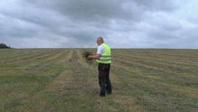 Farmer on straw field in windy and rainy day stock video footage