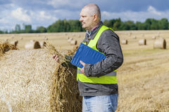 Farmer with straw in hand near straw bales on field Royalty Free Stock Photos