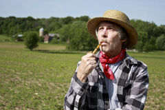 Farmer in straw hat Royalty Free Stock Images