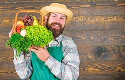Farmer straw hat deliver fresh vegetables. Farmer with homegrown vegetables in basket. Man bearded farmer presenting eco stock photos
