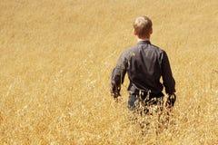 Farmer in suit standing in field of oats Stock Photo