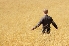 Farmer in suit standing in field of oats Stock Photo