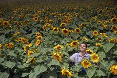 Farmer in sunflower field. Farmer standing in front of a sunflower field Royalty Free Stock Photo