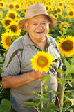 Farmer in sunflower field. Agriculture Royalty Free Stock Image