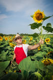 Farmer in sunflower field Royalty Free Stock Image