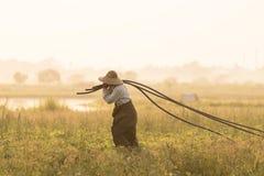 Farmer sunset Stock Image
