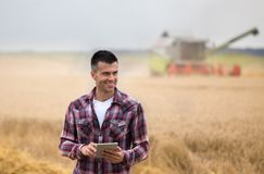 Farmer with tablet in field during harvest royalty free stock photography