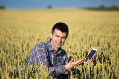 Farmer with tablet in green wheat field Royalty Free Stock Photo