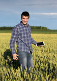 Farmer with tablet in green wheat field Royalty Free Stock Photos