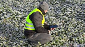 Farmer with tablet PC check plants on frozen field stock video