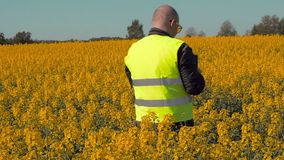 Farmer take pictures on tablet PC at rape field stock video footage