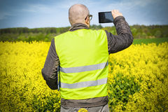 Farmer take pictures on tablet PC at rape field Royalty Free Stock Photos