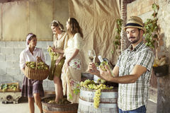 Farmer taste a glass of white wine. Harvesting time Royalty Free Stock Photos