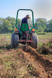 Farmer Tilling Field Harvesting Potatoes Virginia Stock Photography
