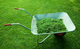 Farmer tool with green grass Stock Photos