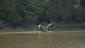 Farmer tractor cultivates a rice field stock video footage
