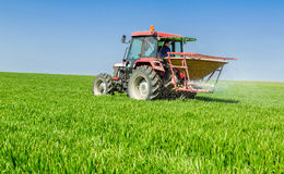 Farmer in tractor fertilizing wheat field at spring with npk. royalty free stock photos