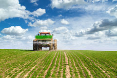 Farmer in tractor fertilizing wheat field at spring with npk. Stock Photo