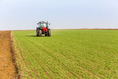 Farmer in tractor fertilizing wheat field at spring with npk royalty free stock image