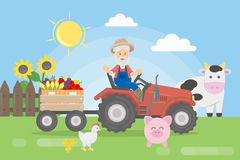Farmer on tractor. Farmer on tractor with harvest and animals Royalty Free Stock Images
