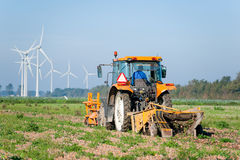 Farmer on tractor harvesting onions Royalty Free Stock Images