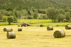 Farmer on tractor with hay bales Royalty Free Stock Image