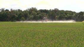 Farmer with tractor spray summer green wheat crop farm field stock video