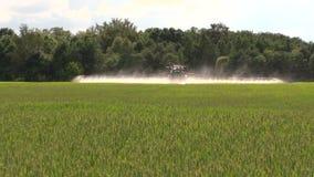Farmer with tractor spray wheat farm field in summer stock video
