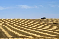 Farmer transporting straw bales in harvested field Royalty Free Stock Images