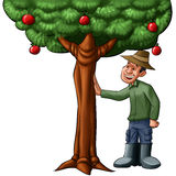 Farmer and the tree. Happy farmer going to watch his tree full of fruits Royalty Free Stock Photography