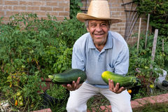 Farmer with two huge zucchinis Royalty Free Stock Images