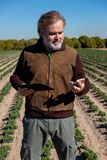 A farmer uses his tablet and his mobile in his field. stock photos