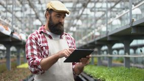 Farmer using agriculture app on tablet, smart greenhouse irrigation system