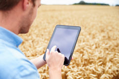 Farmer Using Digital Tablet In Field Of Wheat Royalty Free Stock Photos