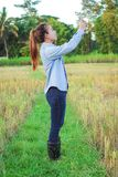Farmer using digital telephone in cultivated rice field Stock Photo