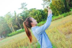 Farmer using digital telephone in cultivated rice field Royalty Free Stock Photography