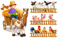 Farmer on wagon and animals behide fence Stock Photo