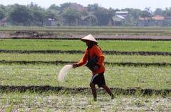 Farmer Stock Images
