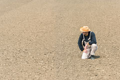 Farmer watching plowed field Royalty Free Stock Images